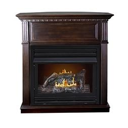 Pleasant Hearth Convertible Vent-Free Dual Fuel Fireplace, 4